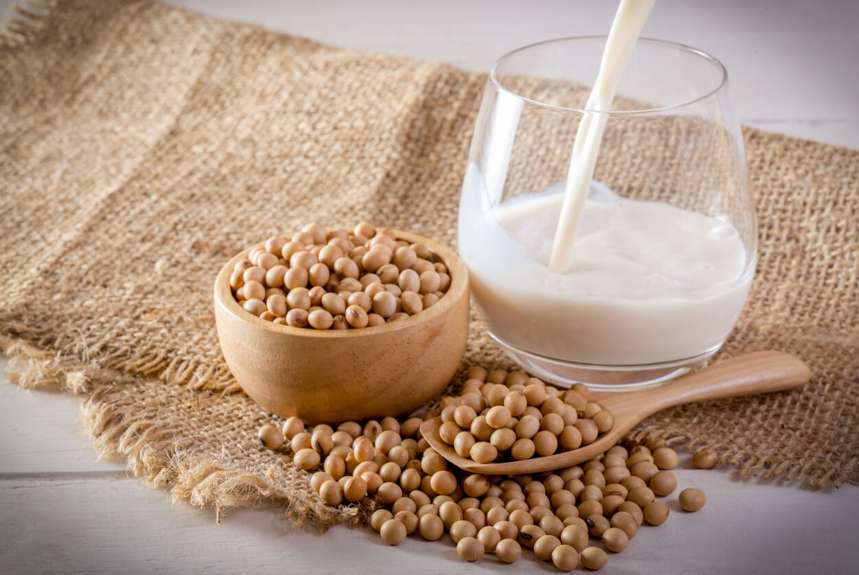soy milk and soy beans